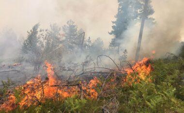 Zjarr masiv në Memaliaj, era dhe terreni i pyllëzuar vështirësojnë punën e zjarrfiksëve