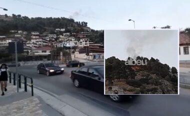 Zjarr edhe në Berat, merr flakë kodra me pisha në zonën e kalasë