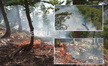 Vijojnë zjarret në Prrenjas, digjet 1 hektar sipërfaqe me pyje
