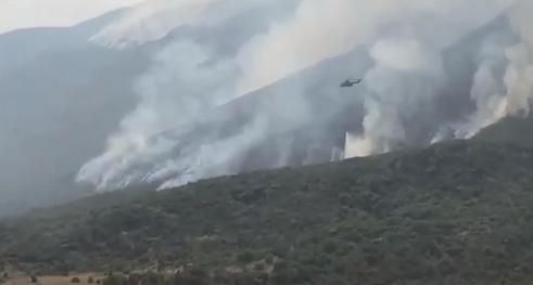 Rama reagon për zjarret: Ushtria dhe trupat Rangers në terren, meritojnë inkurajim