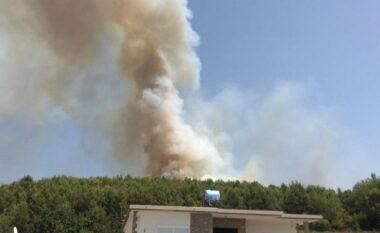 Aktivizohet një vatër zjarri në Mamurras, flakët afrohen me banesat (VIDEO)