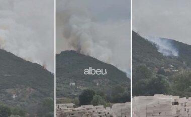 Zjarr në fshatin Peshkëpi në Vlorës, shkrumbohen ullinjtë