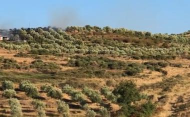 E FUNDIT/ Zjarr masiv në Levan të Fierit