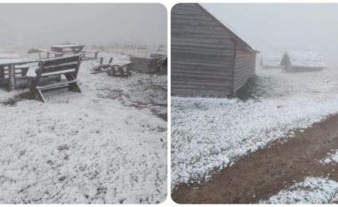 Bora mbulon edhe Rugovën (FOTO LAJM)