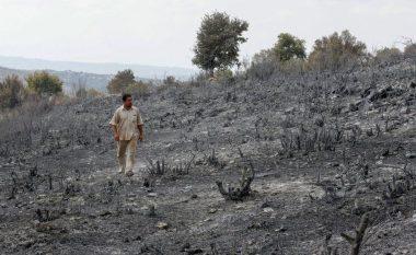 Të akuzuar për zjarrvënia një vit më parë, Siri ekzekuton 24 persona