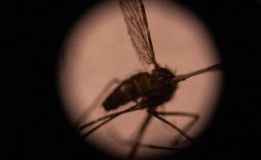 OBSH miraton përdorimin e vaksinës së parë të malaries në botë në Afrikë