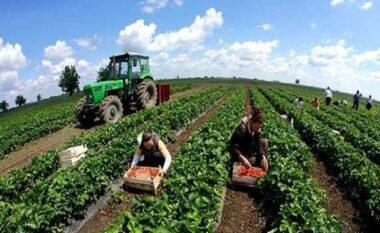 Bujqësia nuk ndjek trendin e ekonomisë, punësimi dhe prodhimi me rënie këtë vit