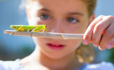 Kujdes! Ky produkt që përdoret për të vrarë insektet, dëmton zhvillimin e fëmijëve