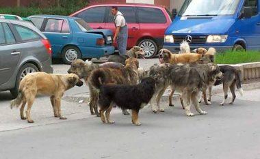 Vrasja e qenit vë në lëvizje Policinë e Durrësit: Do e vlerësojmë maksimalisht ngjarjen, do e zbardhim (FOTO LAJM)