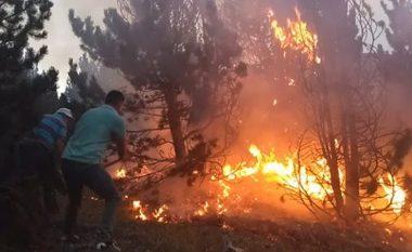 """Zjarri """"përpin"""" kasollen në Gjirokastër, """"luftë"""" me flakët"""