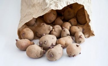 A është e sigurt të hani patate të mbirë?
