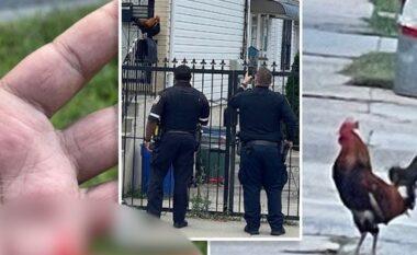 """""""Armiku me pendë"""", gjeli """"terrorizon"""" lagjen në New York duke plagosur kalimtarët (VIDEO)"""