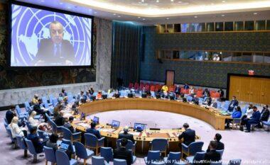 Kosova në Këshillin e Sigurimit: Historia jonë është histori e njerëzve tanë