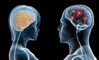 7 ndryshimet midis trurit të femrave dhe meshkujve