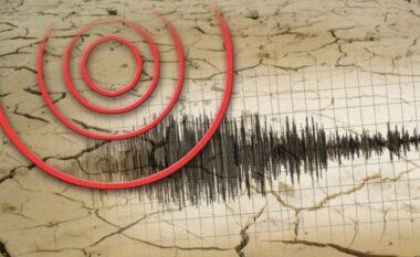 Niko Peleshi bën bilancin e tërmetit